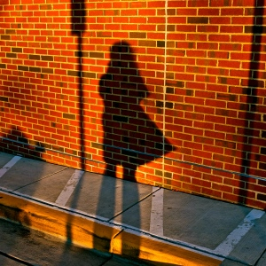 Shadow on Brick