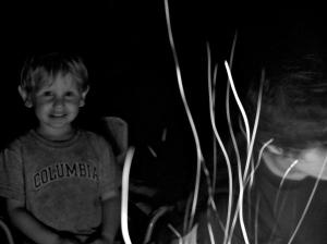 Les Filaments de la Nuit...